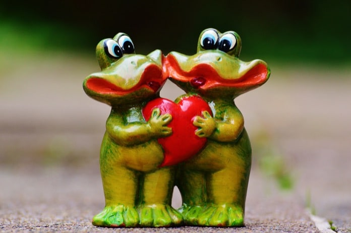 Two frogs in love, accountable to each other